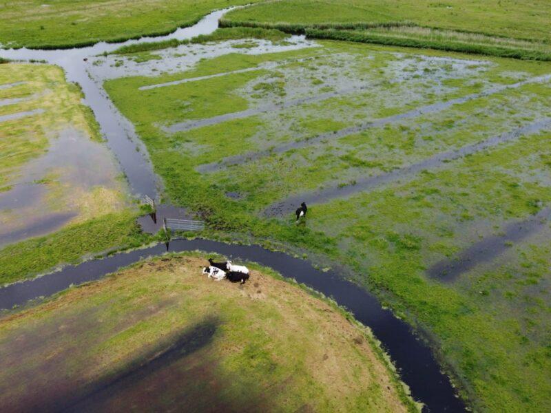 Natuurlijk BBW heeft vragen over wateroverlast